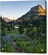 Yakima Peak At Sunrise Acrylic Print