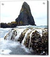Yaquina Waves Acrylic Print by Sheldon Blackwell