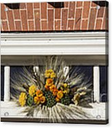 Yarrow And Lotus Arrangment Acrylic Print