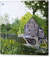 Yates Mill Summer Acrylic Print