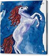Year Of The Horse Acrylic Print