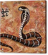 Year Of The Snake Acrylic Print