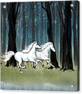 Year Of The Wood Horse Acrylic Print