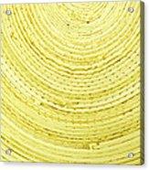 Yellow Arcs Acrylic Print