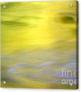 Yellow Autumn Reflections Acrylic Print