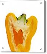 Yellow Bell Pepper Acrylic Print