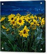 Yellow Bouquet Acrylic Print