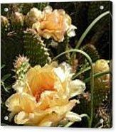 Yellow Brilliance 2 Acrylic Print