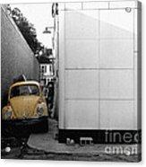 Yellow Bug Acrylic Print by   Joe Beasley