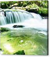 Yellow Creek Falls Great Smoky Mountains Acrylic Print