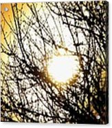 Yellow Dreamscape Acrylic Print