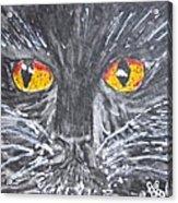 Yellow Eyed Black Cat Acrylic Print
