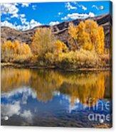 Yellow Fall Reflections Acrylic Print