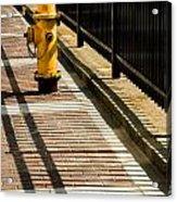 Yellow Fire Hydrant - Pittsfield - Massachusetts Acrylic Print