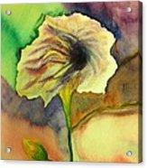 Yellow Flower Acrylic Print by Anais DelaVega