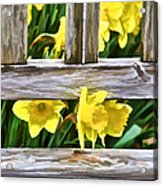Yellow Flowers By The Bench Acrylic Print
