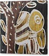 Yellow Head Brown Owl Bird On The Tree Acrylic Print