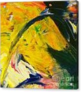 Yellow Horse Acrylic Print