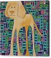 Yellow Lab Pup Acrylic Print