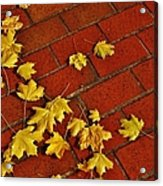 Yellow Leaves On Red Brick Acrylic Print