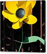 Yellow Metal Garden Flower Acrylic Print