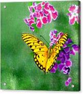 Yellow Monarch Butterfly Acrylic Print