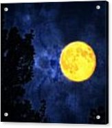 Yellow Moon Acrylic Print by Dan Quam