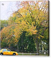 Yellow Nyc Taxi Driving Through Central Park Usa Acrylic Print