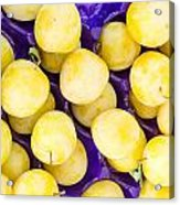 Yellow Plums Acrylic Print