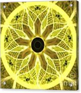 Yellow Rays Acrylic Print