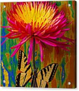Yellow Red Mum With Yellow Black Butterfly Acrylic Print