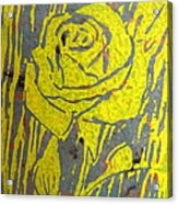 Yellow Rose On Blue Acrylic Print by Marita McVeigh