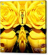 Yellow Roses Mirrored Effect Acrylic Print