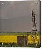 Yellow Storm Acrylic Print