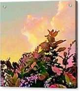 Yellow Sunrise And Flowers - Vertical Acrylic Print