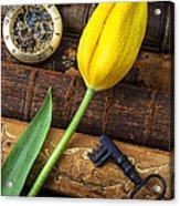 Yellow Tulip On Old Books Acrylic Print