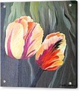 Yellow Tulips Acrylic Print by Carola Ann-Margret Forsberg