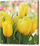 Yellow Tulips In The Spring Garden Acrylic Print