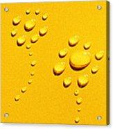 Yellow Water Flowers Acrylic Print by Kip Krause