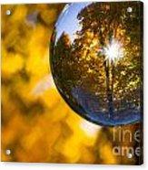 Yellow Zig Zag Acrylic Print