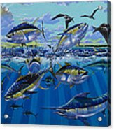 Yellowfin Run Off002 Acrylic Print