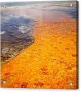 Yellowstone - The Elements Acrylic Print