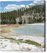 Yellowstone 1 Acrylic Print