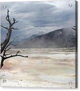 Yellowstone 21 Acrylic Print