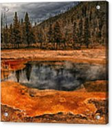 Yellowstone 3 Acrylic Print