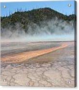 Yellowstone 4 Acrylic Print