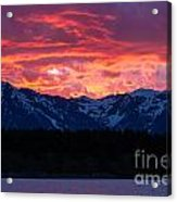 Yellowstone Beauty Acrylic Print