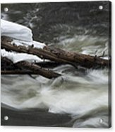 Yellowstone Falls Acrylic Print by David Yack