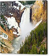 Yellowstone Falls In Spring Time Acrylic Print