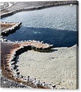 Yellowstone Jeyser Acrylic Print